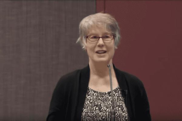 Dr. Laurie Radovsky Presentation at MN Lyme Association meeting
